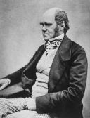 C__Data_Users_DefApps_AppData_INTERNETEXPLORER_Temp_Saved Images_330px-Charles_Darwin_seated_crop