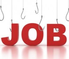 job-employment-300x257