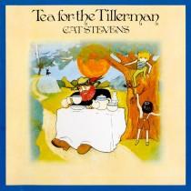 She Sins_ Vinyl Wednesday_ Cat Stevens - Tea for the Tillerman