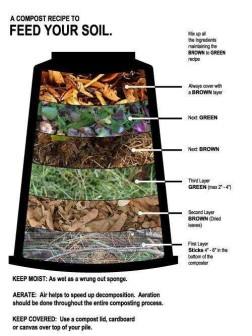 Compost _ Compost _ Pinterest