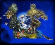 World Biodiversity Day_ It's time for celebration