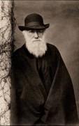 darwin-_-books-authors-philosophy-_-pinterest
